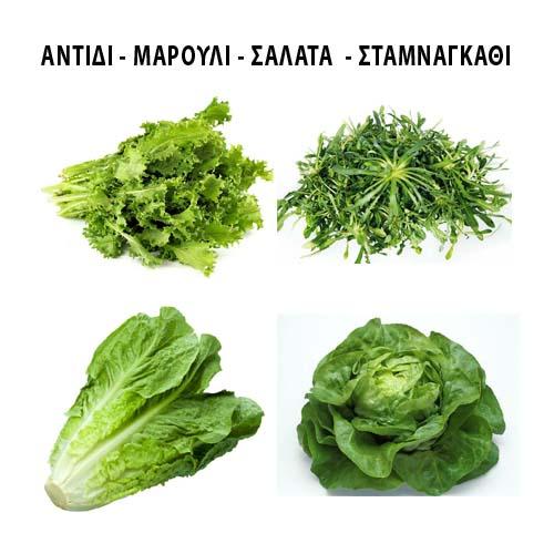 Αντίδι - Μαρούλι - Σταμναγκάθι - Σαλάτα
