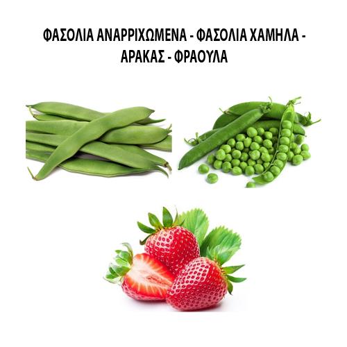Φασόλια αναριχόμενα - Φασόλια χαμηλά - Αρακάς - Φράουλα