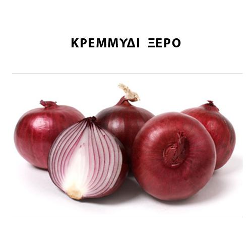 Κρεμμύδι ξερό - Σκόρδο