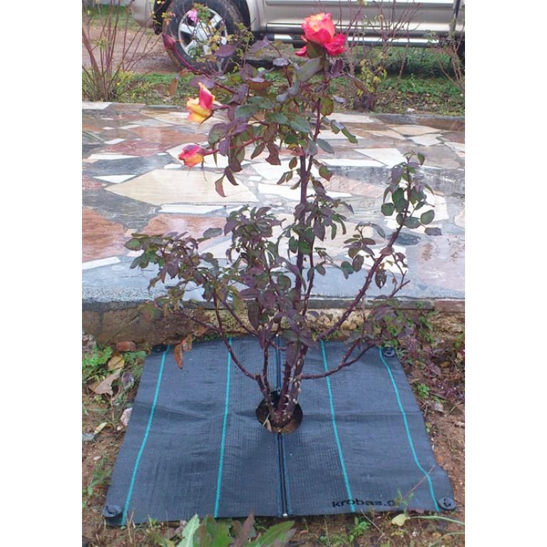 60cm x 60cm | 2 φερμουάρ για δέντρα, αμπέλια και φυτά (ύφασμα τετράγωνο εδαφοκάλυψης κωδ. 90101)