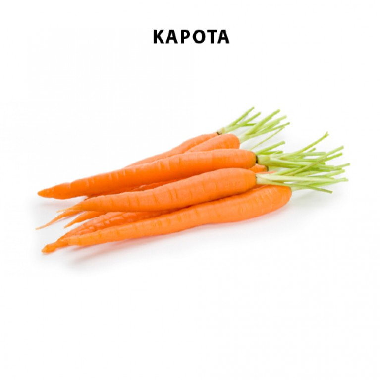 70cm x 125cm οπές για καρότο