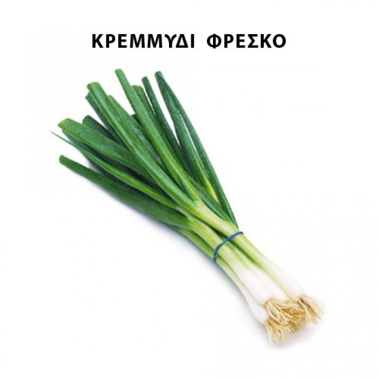 100cm x 245cm για κρεμμύδι φρέσκο