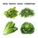 ΑΝΤΙΔΙ - ΜΑΡΟΥΛΙ - ΣΑΛΑΤΑ - ΣΤΑΜΝΑΓΚΑΘΙ